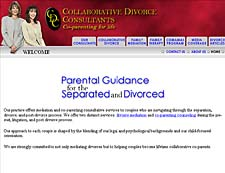 Mediators/Therapists 